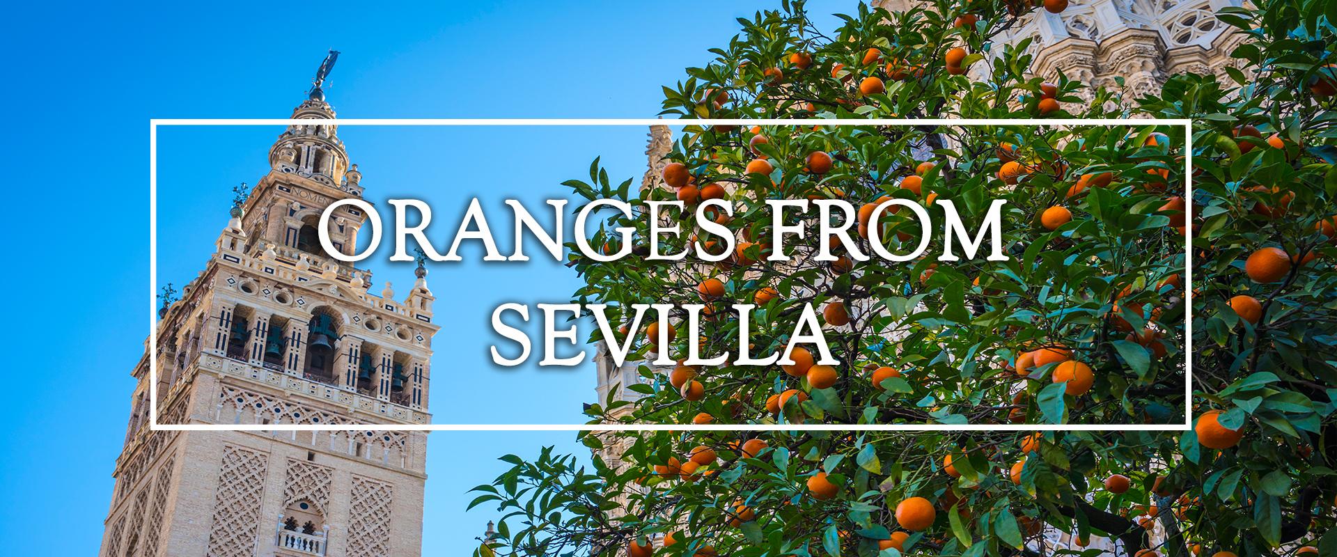perlola oranges from sevilla