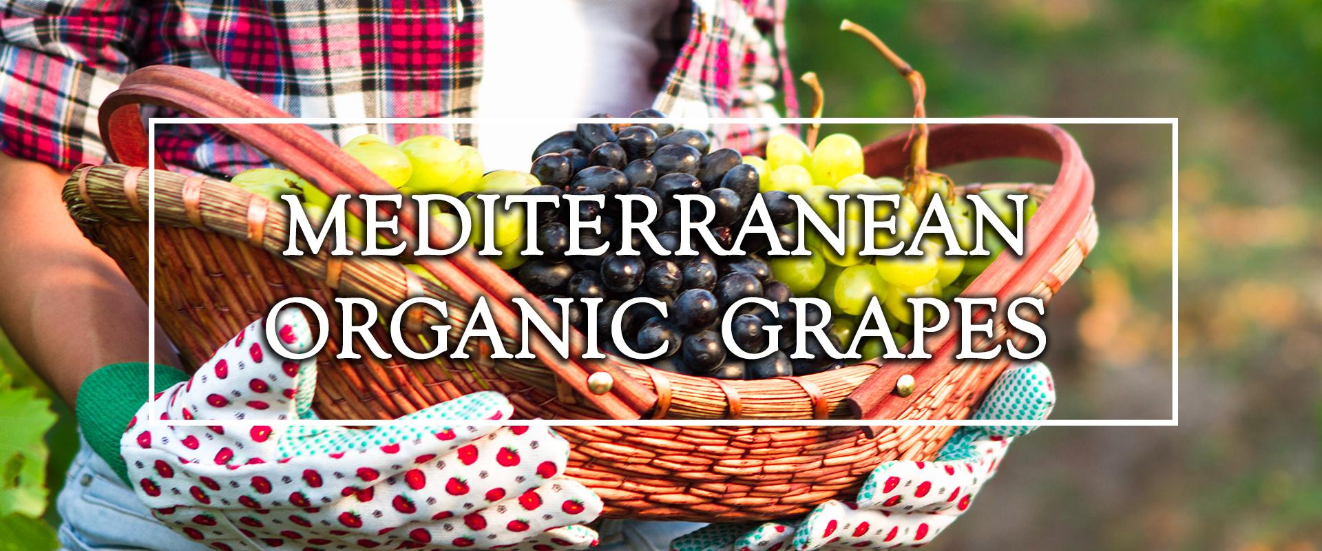 perlola organic grapes